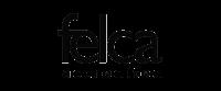 logo_felca